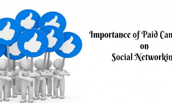 Importance of Paid Campaigns on Social Networking